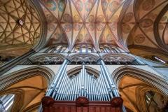 Lofty Organ Pipes by Kayla Stevenson