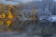 Changing Seasons by Katia Stano