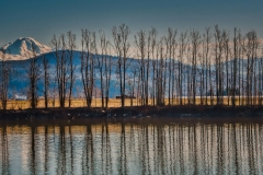 Reflections On The Fraser by Carol Jackson