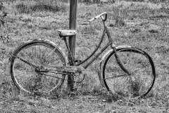 Time For A New Bike by Irene Mcneill