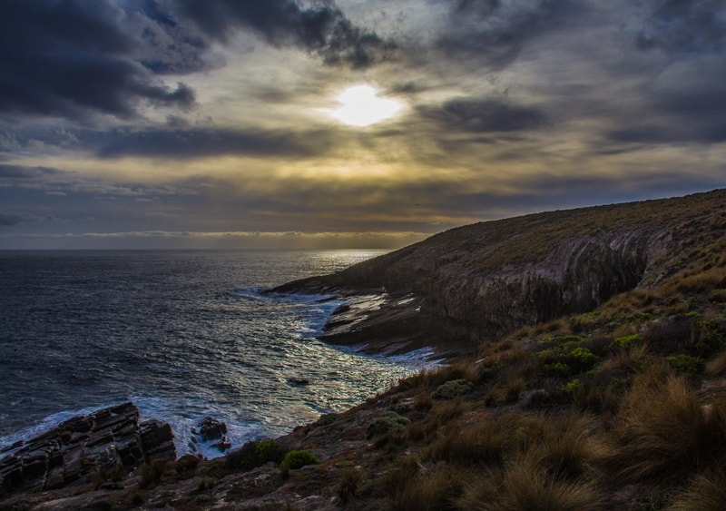 Coastal Vista by  Denise Roussel