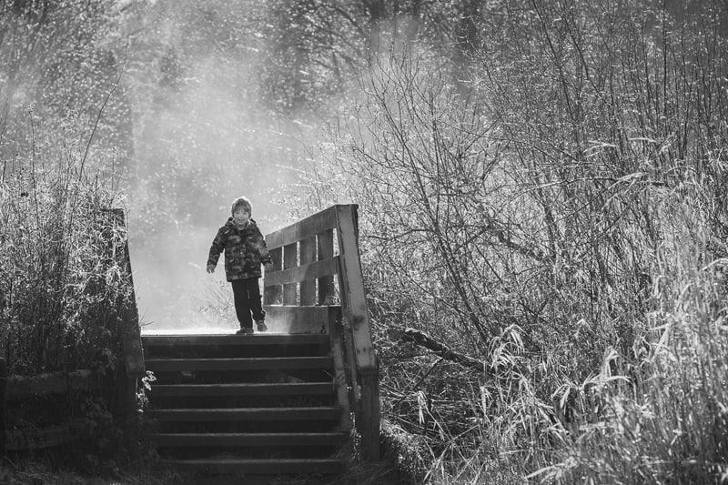 Misty Morning Walk by  Iris Schurz