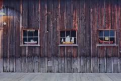 Three Windows And A Door by Carol Jackson