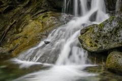 Bosumarne Falls by  Liz Lynch