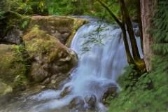 The Silky Cascade Of Whatcom Falls by  Marlene Reimer