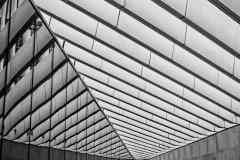 Contemporary Reflections by  Barbara Cameron