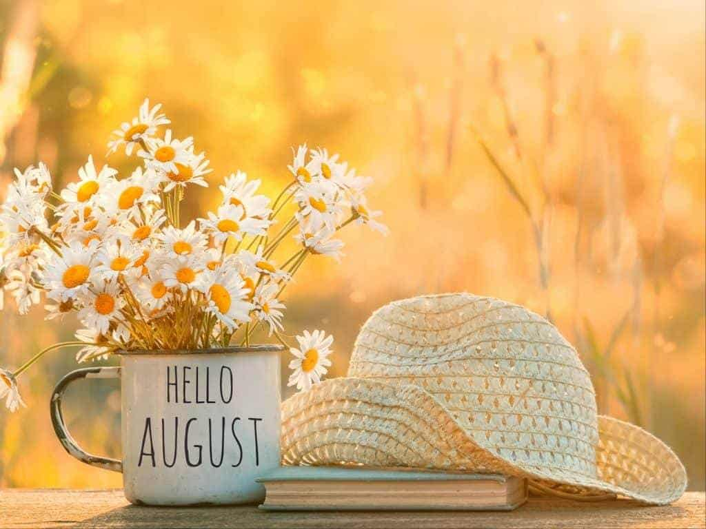 This Month – August 2020